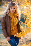 Beautiful woman in autumn park. Stock Images