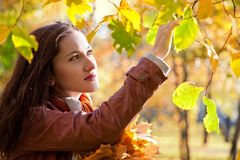 Beautiful woman in autumn park Stock Photos
