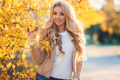 Beautiful woman in autumn park. Royalty Free Stock Photo
