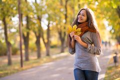 Beautiful woman in the autumn park royalty free stock photo