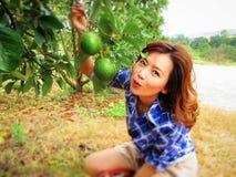 Beautiful woman with Avocado Royalty Free Stock Photos