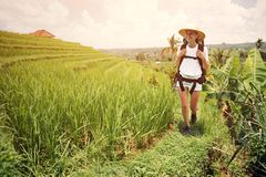 Beautiful woman with backpack walking across green field. Intentional sun glare Royalty Free Stock Photography