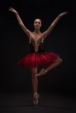 Beautiful woman ballet dancer Royalty Free Stock Photography