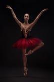 Beautiful woman ballet dancer Royalty Free Stock Photography