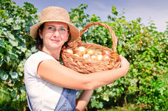 Beautiful woman with basket of onions Stock Photography