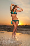 Beautiful woman in a bathing suit Stock Photography
