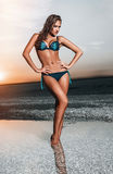Beautiful woman in a bathing suit Royalty Free Stock Images