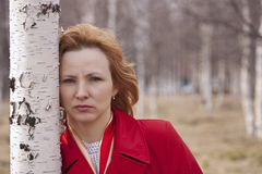 Beautiful woman in a birch forest Stock Photography