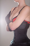 Beautiful woman in black corset and red bra embracing herself Royalty Free Stock Image