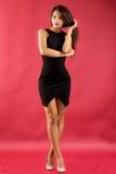 Beautiful woman in black dress Stock Photos
