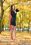 Beautiful woman in black dress in yellow city park, fall season Royalty Free Stock Images