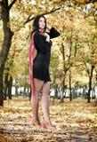 Beautiful woman in black dress in yellow city park, fall season Stock Photography