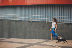 Beautiful woman with black french bulldog puppy at the street Royalty Free Stock Image