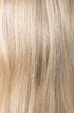Beautiful woman blond hair Royalty Free Stock Photography