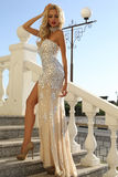 Beautiful woman with blond hair in luxurious dress and bijou Stock Images
