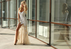 Beautiful woman with blond hair in luxurious dress and bijou Royalty Free Stock Photos