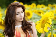 Beautiful woman on blooming sunflower field in summer Stock Photography