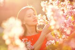 Beautiful woman among blossoming trees Royalty Free Stock Photo