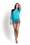Beautiful woman in blue blouse Stock Photography