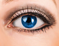 Beautiful woman blue eye with long lashes. Beautiful woman blue eye with false extremely long lashes royalty free stock photo