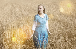 Beautiful woman in a blue long dress in the field of ripe cereals Stock Image