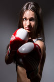 Beautiful woman with the boxing gloves Royalty Free Stock Image