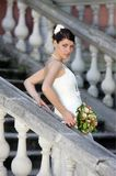 Beautiful Woman bride Stock Images