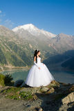 Beautiful woman the bride in a wedding dress Stock Photo