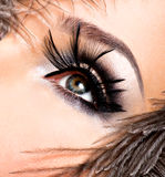 Beautiful woman with bright professional make-up. With feathers near the face royalty free stock image