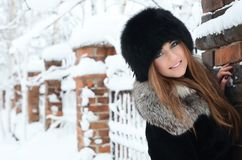 The beautiful woman brunette in winter Royalty Free Stock Photo
