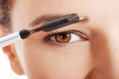 Beautiful woman brushing her eyebrow. Royalty Free Stock Photos