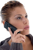 Beautiful woman busy on phone Royalty Free Stock Photography