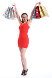 Beautiful woman celebrates successful shopping Stock Photos