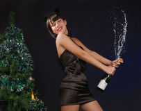 Beautiful woman with a champagne bottle Stock Images