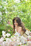 Beautiful woman collecting flower in flower garden Royalty Free Stock Photography