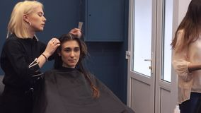 Beautiful woman combing wet hair. stylist brushing woman hair in salon. Hairdresser Serving Customer. Professional Young