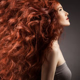 Beautiful woman with curly hair on gray background royalty free stock photos