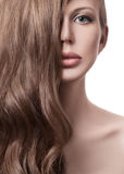 Beautiful Woman. Curly Long Hair Stock Photography