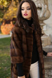 Beautiful woman with dark hair in luxurious fur coat posing at park Stock Photography
