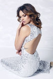 Beautiful woman with dark hair  in luxurious silver dress Stock Photos