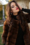 Beautiful woman with dark hair wearing luxurious fur coat Stock Photography