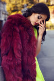 Beautiful woman with dark hair wearing luxurious red fur Royalty Free Stock Images