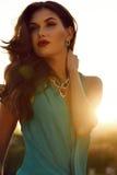 Beautiful woman with dark hair wears luxurious dress with bijou Stock Photography
