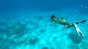 Beautiful Woman Diving Underwater. Snorkeling Girl Swimming in Blue Cristal Clear Water. HD. Similan, Thailand. Beautiful Woman Diving Underwater. Snorkeling stock footage