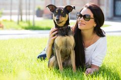 Beautiful woman with dog Stock Images