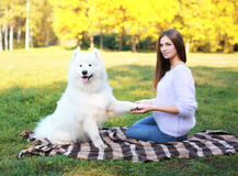 Beautiful woman and dog on the plaid outdoors Stock Photography