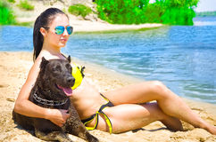 Beautiful woman and dog sitting on the beach Stock Image