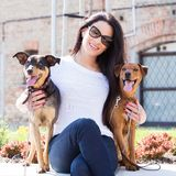 Beautiful woman with dogs Stock Image