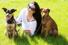 Beautiful woman with dogs Royalty Free Stock Images