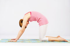 Beautiful woman doing cat yoga pose stock image